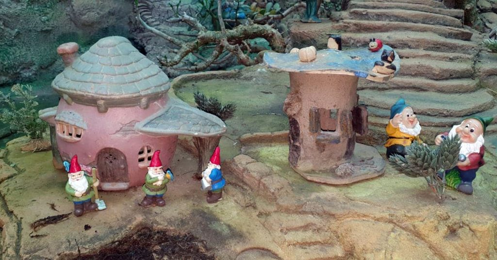 Pixie-and-Fairy-Village3